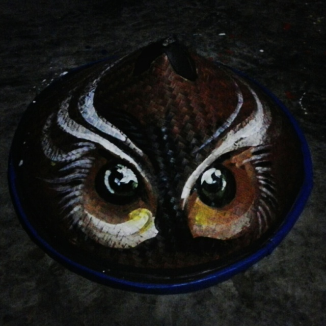 Burung hantu/Owl caping