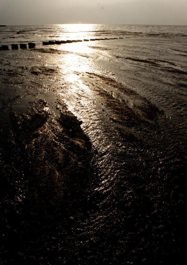 pantai patek Situbondo 11