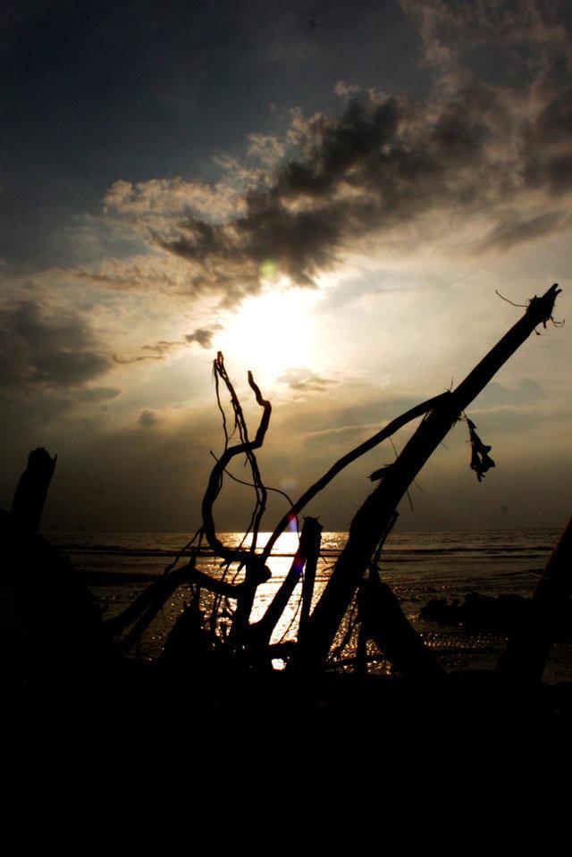 pantai patek Situbondo 12