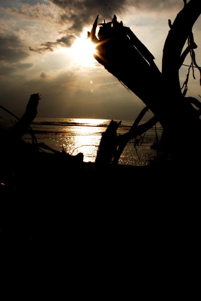 pantai patek Situbondo 14