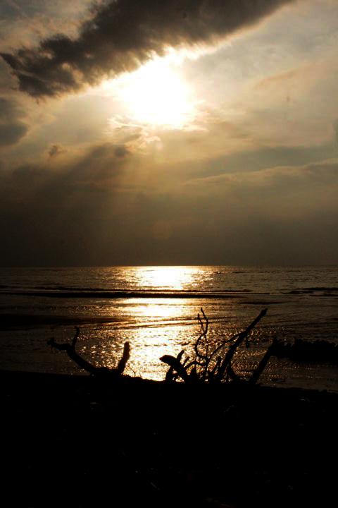 pantai patek Situbondo 15