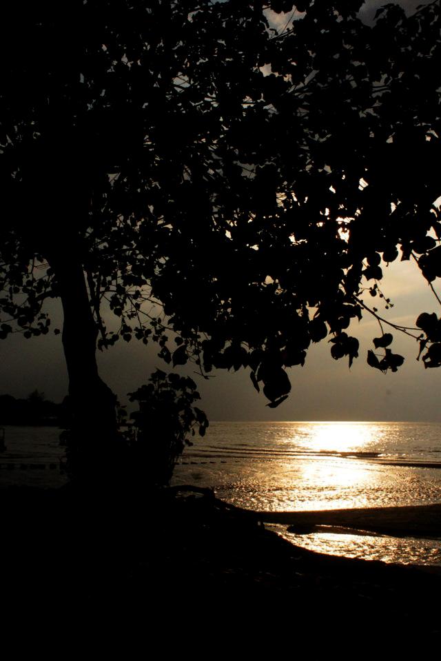 pantai patek Situbondo 16