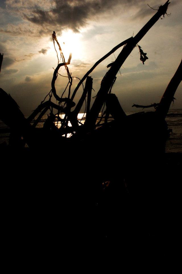 pantai patek Situbondo 3