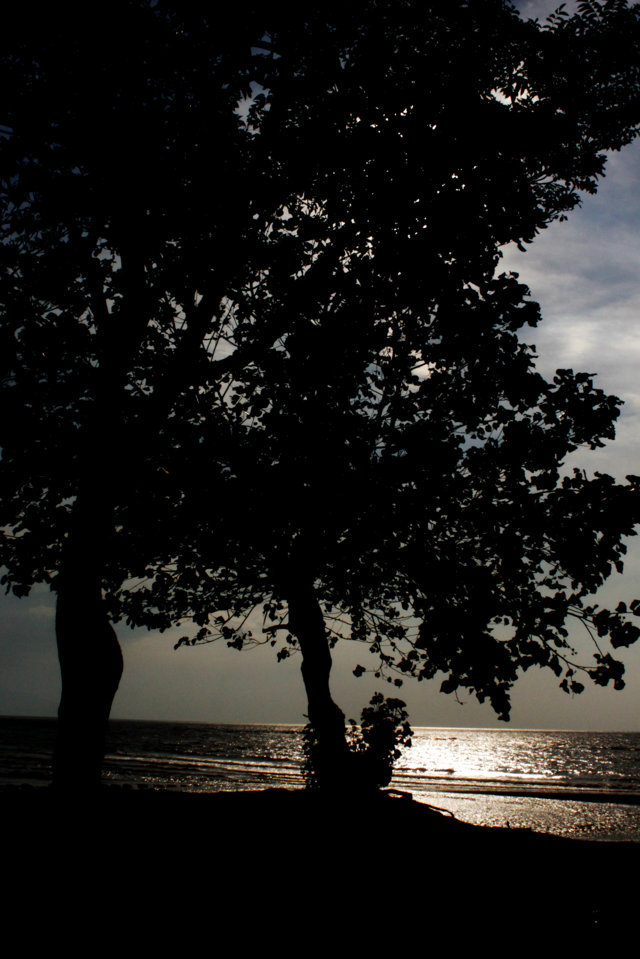 pantai patek Situbondo 4