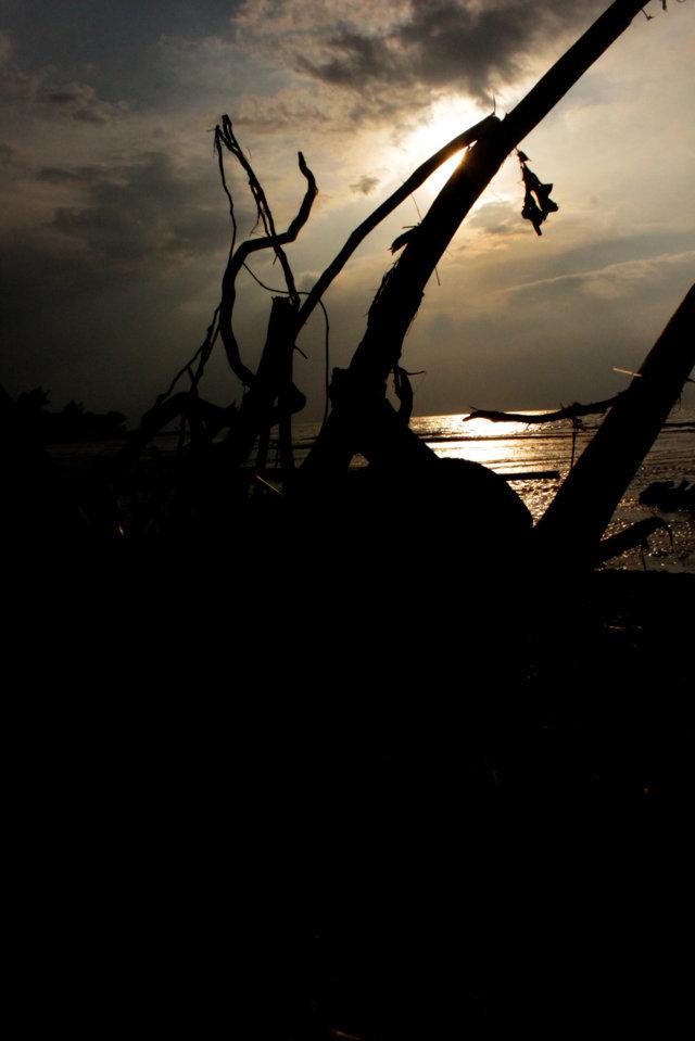 pantai patek Situbondo 8