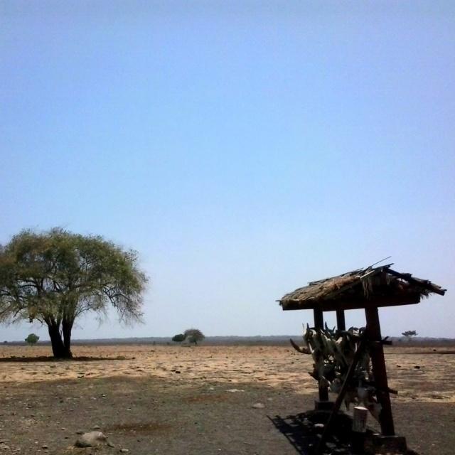 taman nasional Baluran jatim