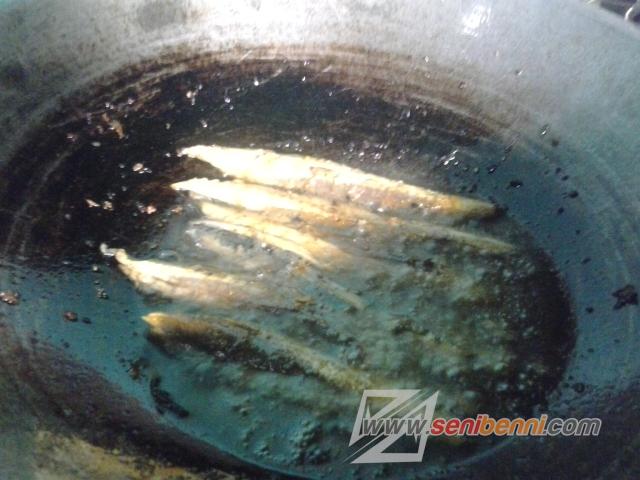 resep ikan tongkol