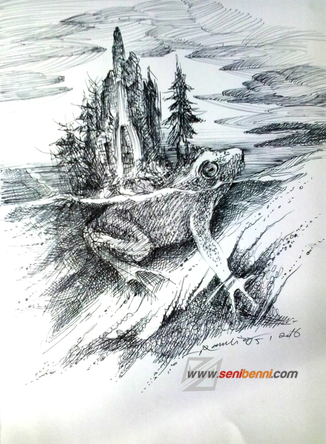 amfibi katak