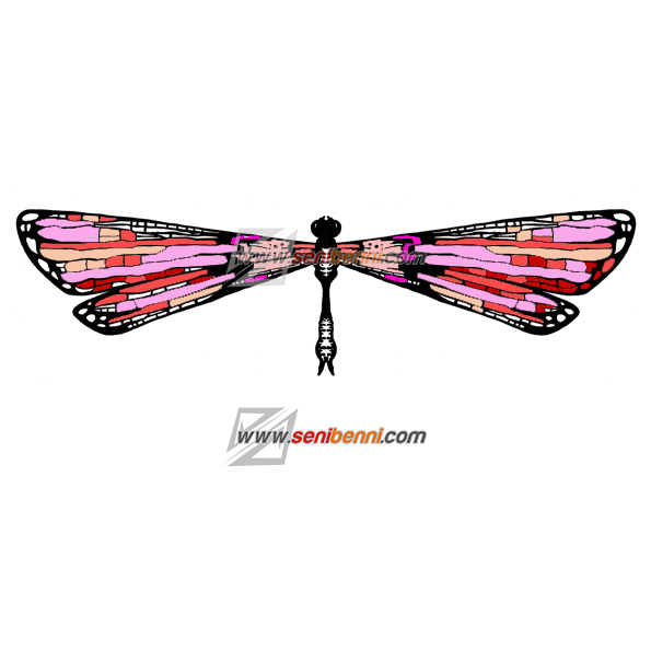 decorative-dragonfly edited